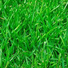 Усройство газона